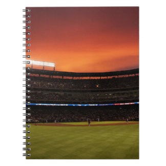 Baseball field note notebook