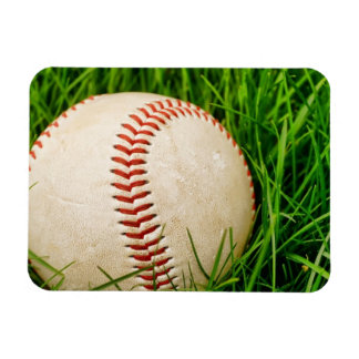 Baseball in the Grass Magnet