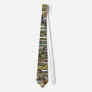 Baseball Stadium Postcards Tie