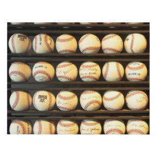Baseball - You have got some balls there Panel Wall Art