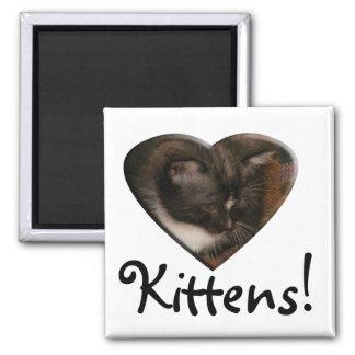 Basement Kitty Love Refrigerator Magnets