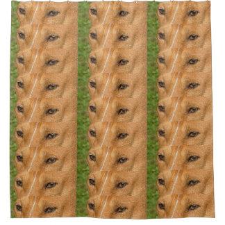 basenji eyes shower curtain