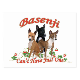 Basenji no puede tener regalos apenas uno tarjeta postal