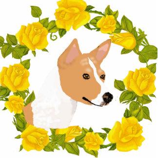 Basenji y rosas amarillos