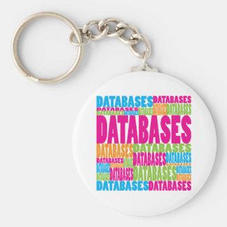 Bases de datos coloridas llavero redondo tipo pin