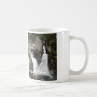 Bash Bish Falls 1 Coffee Mug