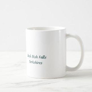 Bash Bish Falls stream Mug