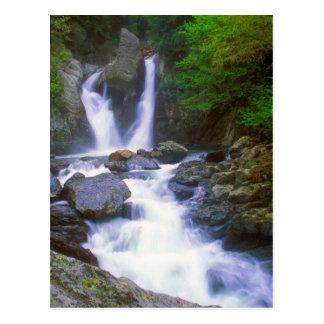 Bash Bish Falls stream Postcard