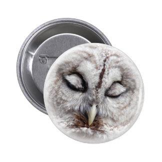 Bashful Barred Owl Pinback Button
