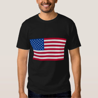 Basic American Flag Products T-Shirt