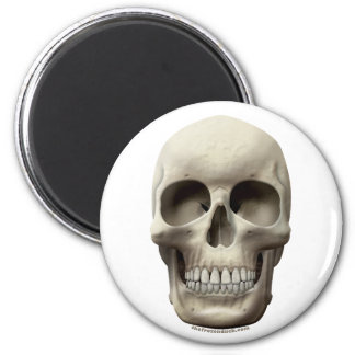 Basic Skull 2 Inch Round Magnet