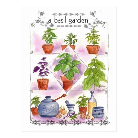 Basil Garden Watercolor Herb Art Pesto Garlic Postcard