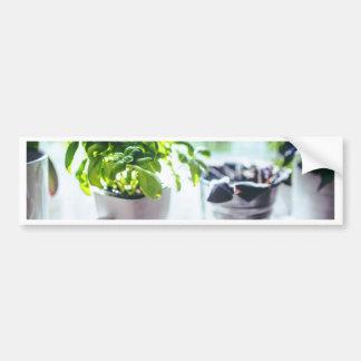 Basil Plant Bumper Sticker