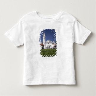 Basílica Nuestra Senora del Pilar en Recoleta Camisas
