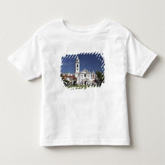 Basilica Nuestra Senora del Pilar in Recoleta 2 Toddler T-shirt