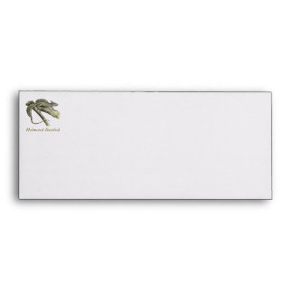 Basilisk Envelope