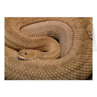 Basilisk Rattlesnake Card