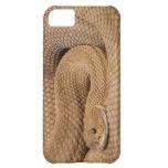 Basilisk Rattlesnake iPhone 5C Cover