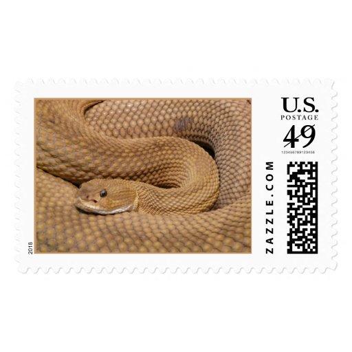 Basilisk Rattlesnake Postage Stamp