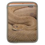 Basilisk Rattlesnake Sleeves For iPads