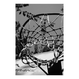 Basket Ball Net Print