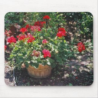 Basket of geraniums mousepad