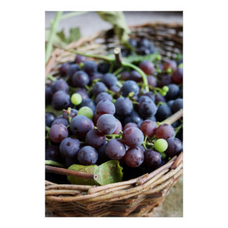 Basket of Grapes Print
