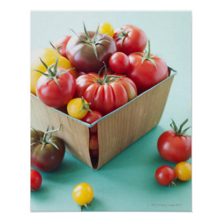 Basket of Heirloom Tomatoes Poster