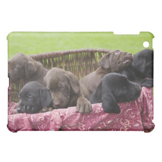 Basket of labrador retriever puppies case for the iPad mini