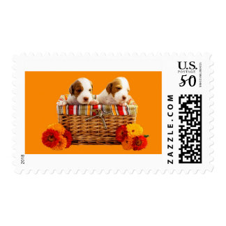 Basket Of Puppies Postage