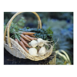 Basket of turnips and carrots, close up postcard