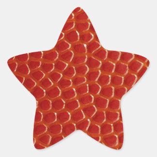 Basketball Close-up Texture Star Sticker