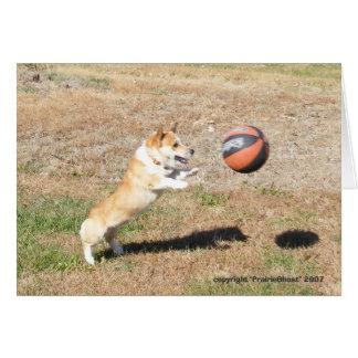 Basketball Corgi Card