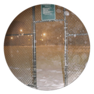 Basketball Court in Snow Plate