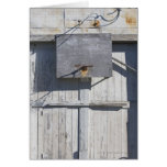 Basketball net on rustic building cards