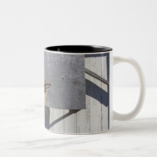 Basketball net on rustic building coffee mug