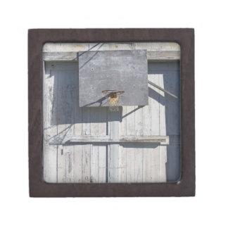 Basketball net on rustic building keepsake box