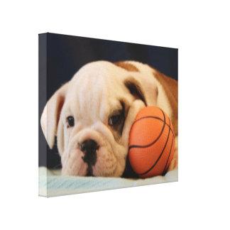 """Basketball Puppy"" English Bulldog Stretched Canvas Print"