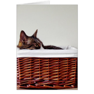 Basketcase Card