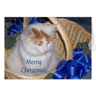 BASKETFUL OF PURRRRFECT CHRISTMAS WISHES CARD
