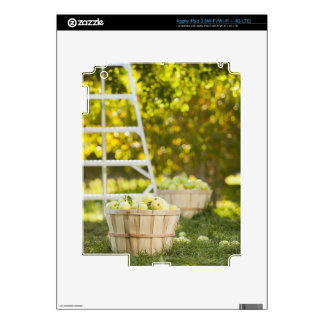 Baskets of apples in orchard decal for iPad 3