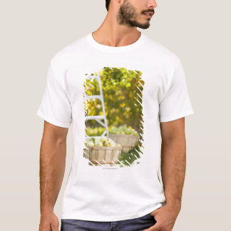 Baskets of apples in orchard T-Shirt