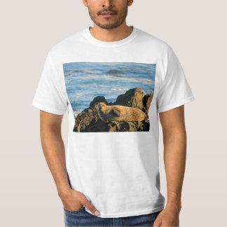 Basking seal tee shirt