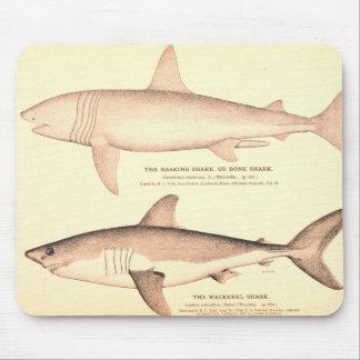 Basking Shark and Mackerel Shark Mouse Pad