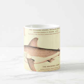 Basking Shark and Mackerel Shark Coffee Mugs