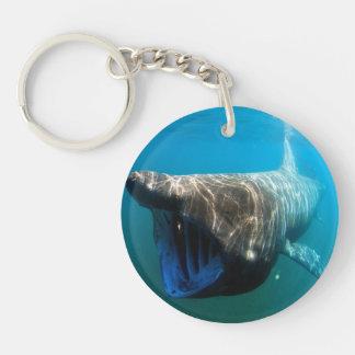 Basking shark (Cetorhinus maximus) Double-Sided Round Acrylic Keychain