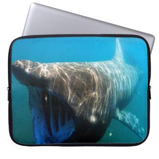 Basking shark (Cetorhinus maximus) Laptop Sleeve