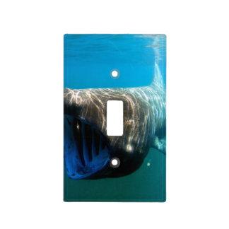 Basking shark (Cetorhinus maximus) Light Switch Cover