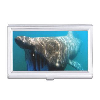 Basking shark (Cetorhinus maximus) Business Card Case