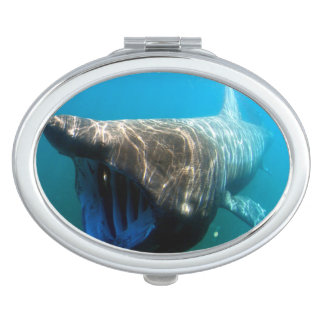 Basking shark (Cetorhinus maximus) Mirrors For Makeup